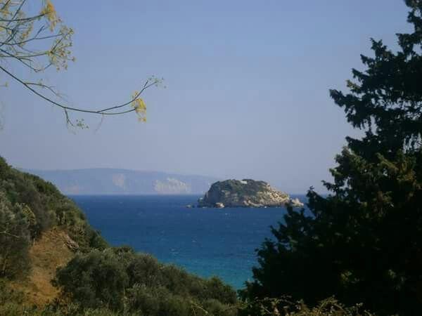 #DinaApartments #Kefalonia #Razata #Ionianislands #greece #avithosbeach #diasisland
