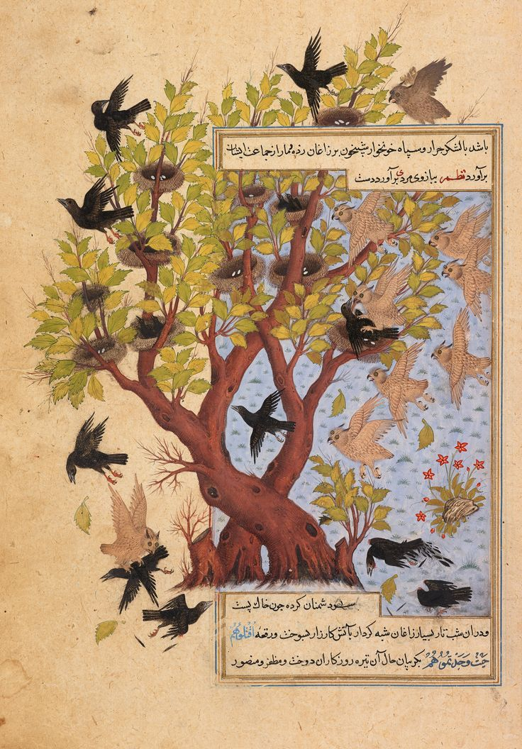 The Battle Between the Owls and Crows Folio 167r of the Anvar-e Soheyli (Lights of Canopus) Accession Number: AKM289 Creator: Rendered into Persian by Kashefi (d. 1504–05). Attributed to Sadeqi Beg Place: Qazvin, Iran Dimensions: 30.3 x 20.6 cm Date: 1593 Materials and Technique: Opaque watercolour, ink, and gold on paper