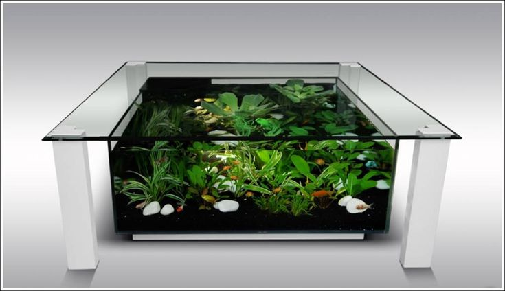 Fish Tank Tables…They Hold Alive Tranquility! 4