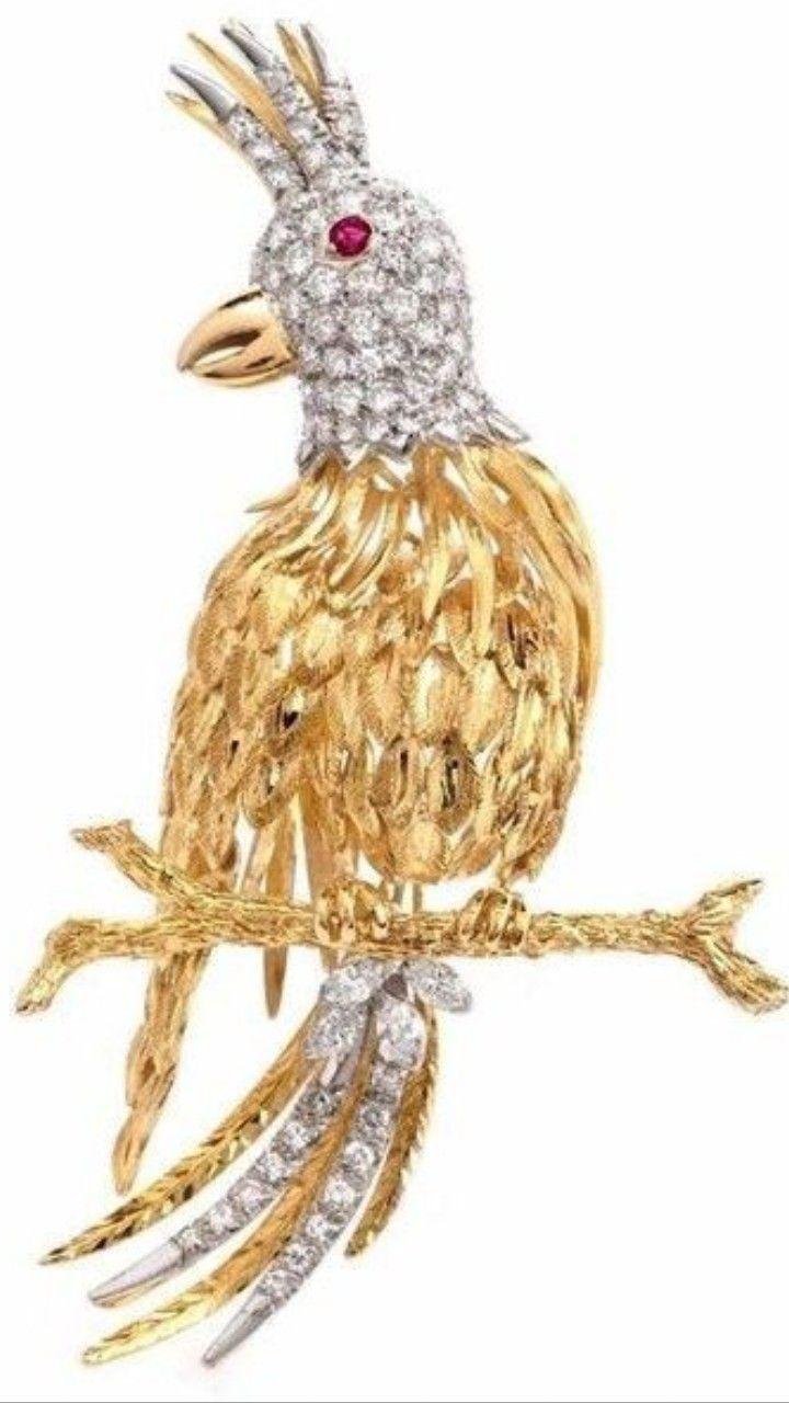 best 25 parrot stand ideas on pinterest bird stand bird perch