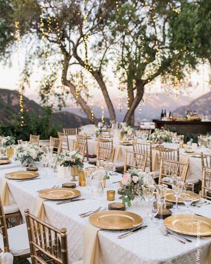 The 200 best tables images on pinterest wedding ideas wedding top love this champagne theme sparkling outdoor wedding junglespirit Choice Image