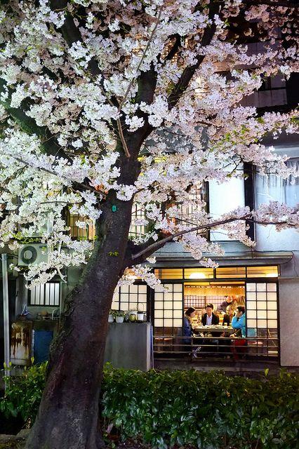 Kiyamachi 木屋町通