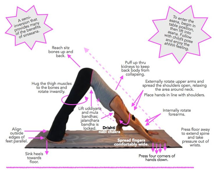 Adho mukha svanasana (downward-facing dog)...just about everyone has an opinion about how it should be done. Just to be clear...this is OUR take on this pose coming from an Ashtanga perspective.
