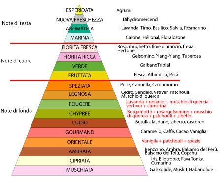 piramide olfattiva
