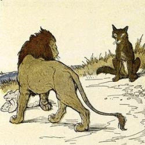 Fábulas de esopo - o lobo e o leão jual fique por dentro de tudo