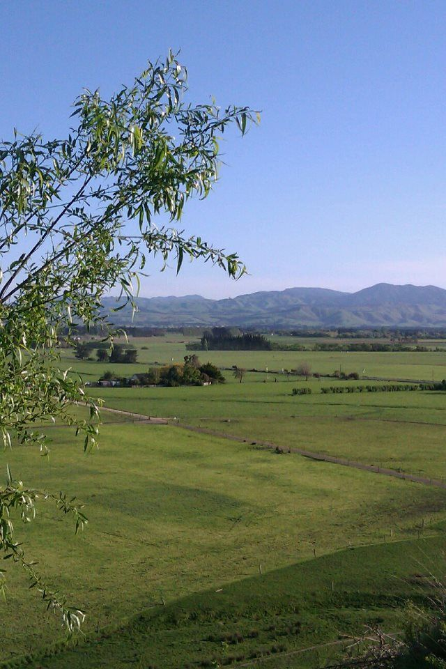 The lookout when coming from Greytown or Featherston. Overlooking stunning landscape toward Martinborough.