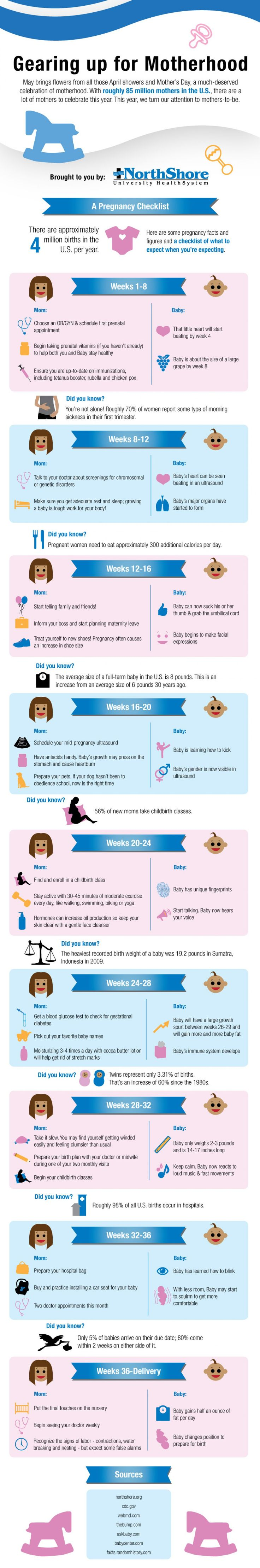 Gearing up for Motherhood: Pregnancy Checklist Infographic