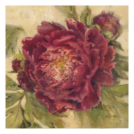 kathryn+white+canvas+art | Scarlet Peony Giclee Print by ...