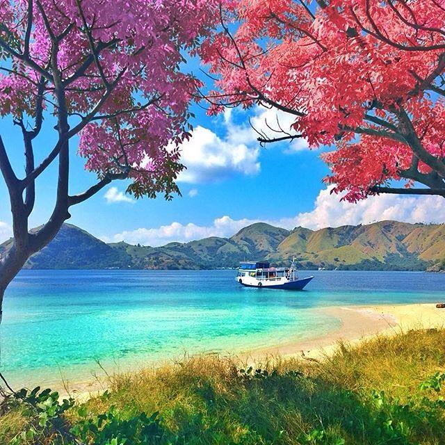 Kelor Island, Labuan Bajo - Indonesia