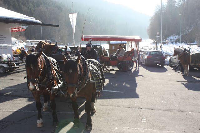 Pferdekutschenfahrt, Winterhochzeit in den Bergen am Riessersee Hotel Garmisch-Partenkirchen in Bayern, Kupfer, Dunkelrot, Hellblau, Grau, Winter wedding abroad Bavaria in copper, ruby red, light blue