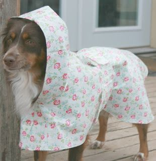 """What's New at Made by De: Who wants that """"Wet Dog Smell""""?  Dog raincoats kee..."""