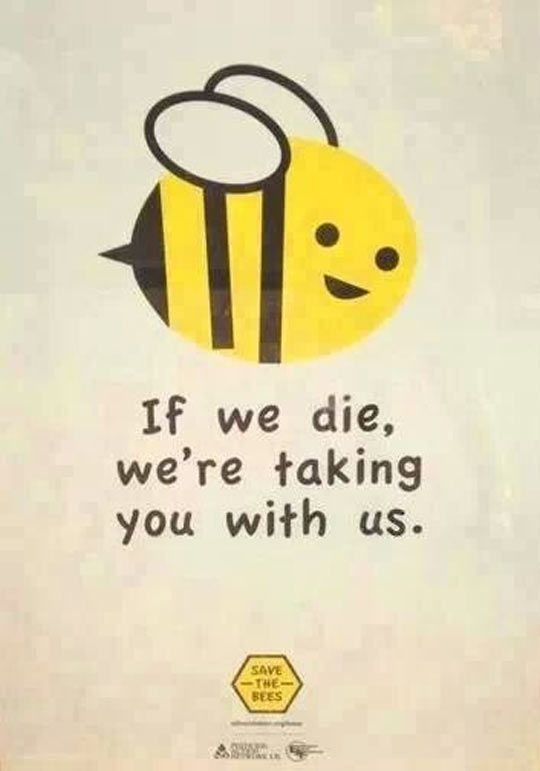 SAVE THE BEES. THEY ARE THE MOST IMPORTANT INSECT ON THE PLANET!!!! TEAM BEE!!!!!!!!!!!!!