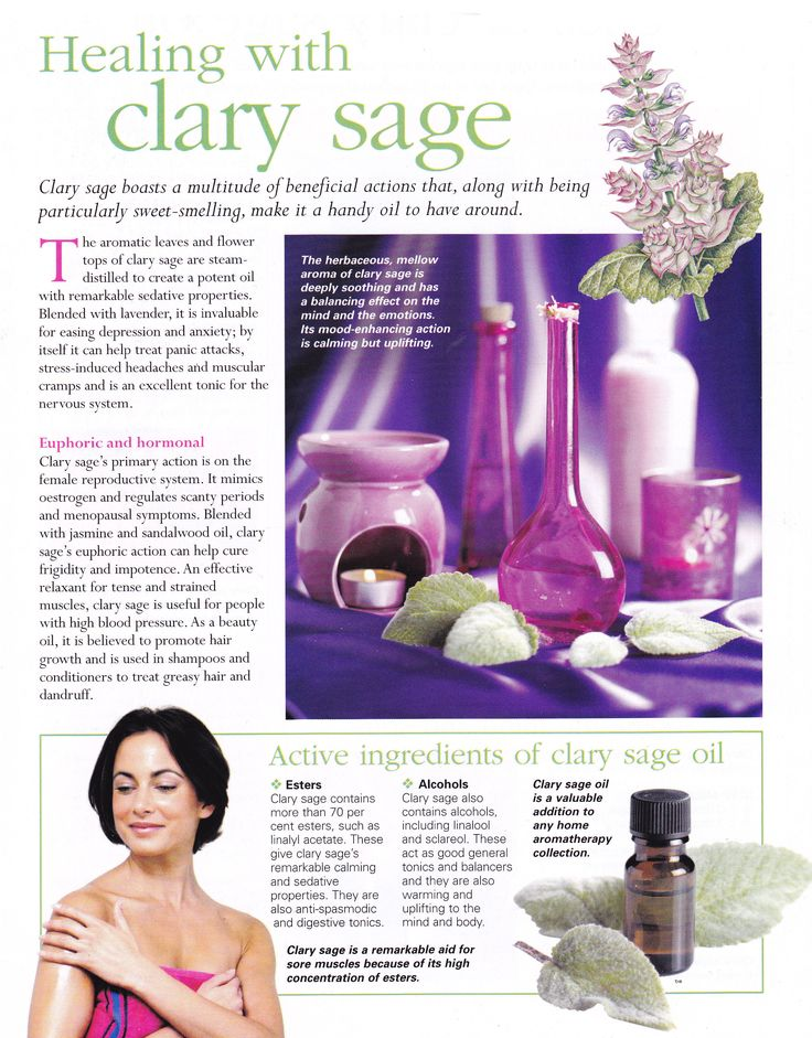 Herbs:  Healing with #Clary #Sage.