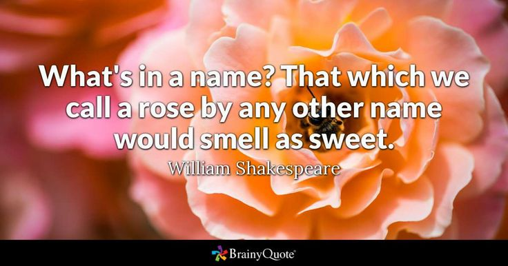 """""""What's in a name? That which we call a rose by any other name would smell as sweet."""" - William Shakespeare quotes from BrainyQuote.com"""