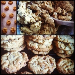 Choc Chip Cookies recipe - Best Recipes