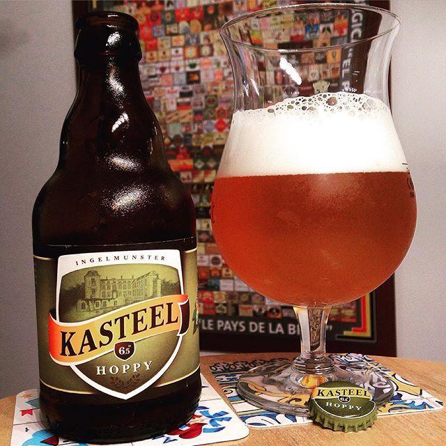 Brouwerij Van Honsebrouck - Kasteel Hoppy(Ale) 6,5% pullo