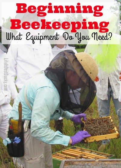 Beekeeping 101 - So you have decided to improve your homestead, farm or garden by getting bees. But what are the beekeeping tools you will need to be a success? Why do you need them and what will they cost?
