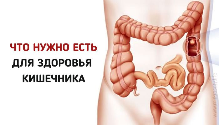 Ведь для полноценной работы, этому органу очень необходимо правильное и полноценное питание.