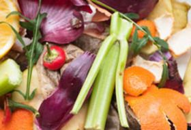 Learn how to make your own indoor or outdoor compost bin!