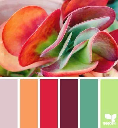 Nature hues color palette