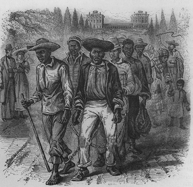 Reading the Language of Violence in the Middle Passage – AAIHS