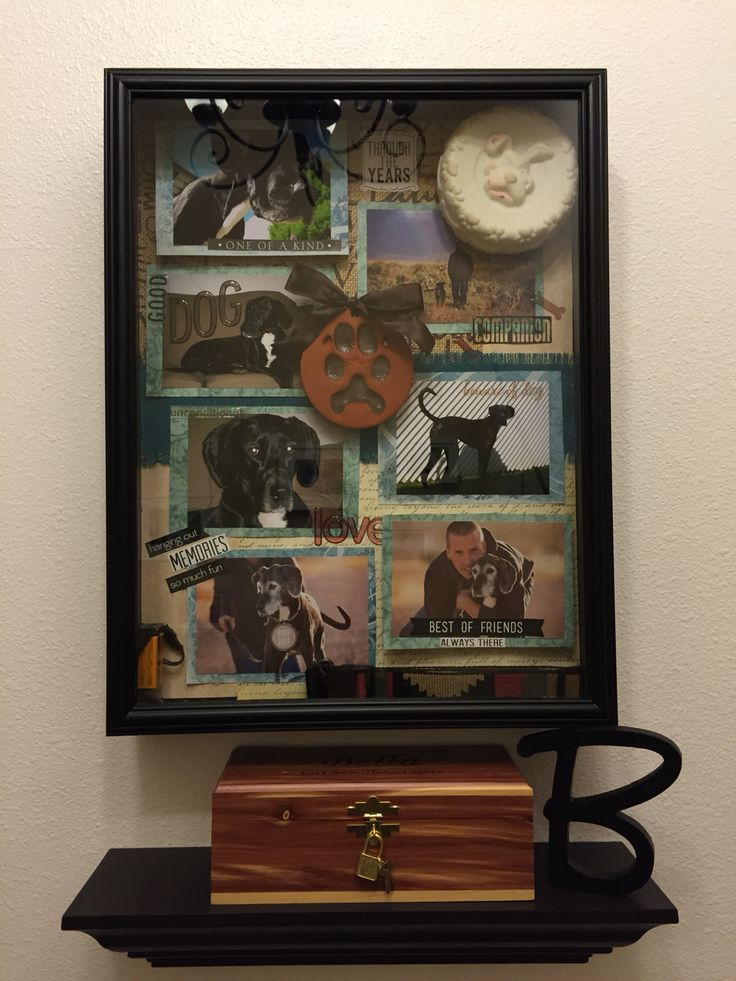 memorial shadow box for our dog bella jess 39 diy pinterest boxes dogs and shadow box. Black Bedroom Furniture Sets. Home Design Ideas