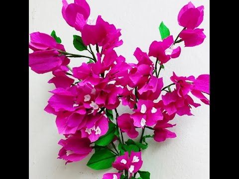 Paper Flower Bougainvillea - YouTube