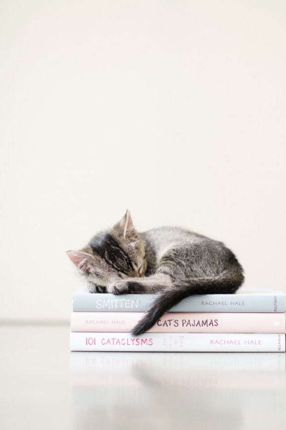 books make the best beds!