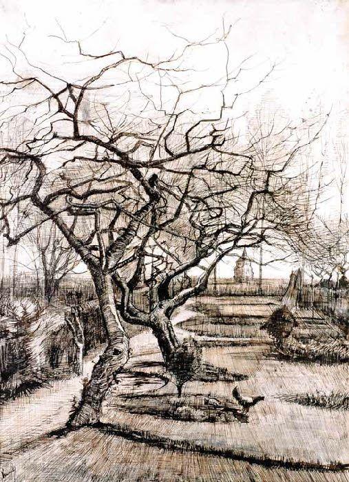 Vincent Van Gogh - Post Impressionism - Arbre du Presbytère - Nuenen - 1885