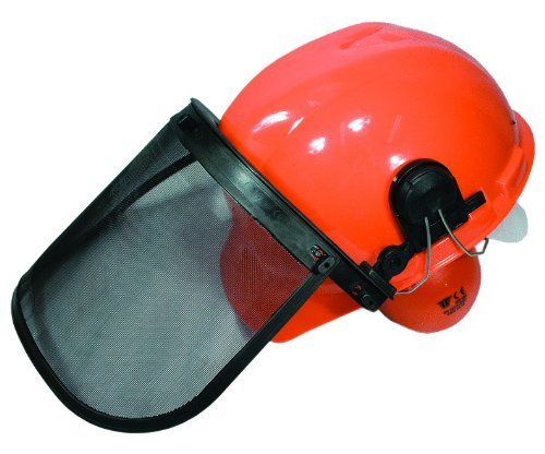 Stens 751-111 Landscaping Safety Helmet System  https://www.safetygearhq.com/product/personal-safety/safety-helmets/stens-751-111-landscaping-safety-helmet-system/