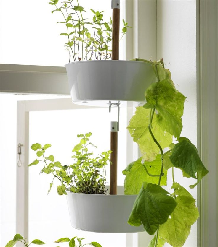 Hanging plants is a great way to use a corner space or window | live from IKEA FAMILY
