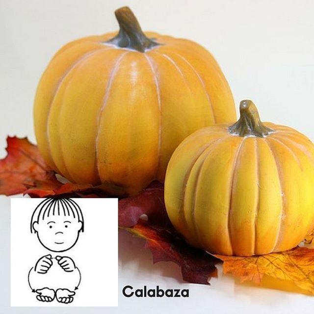 El signo  de hoy es.... Calabaza.  Lengua de signos española. Con la lengua de signos puedes entender a tu bebé antes de que sepa a hablar.