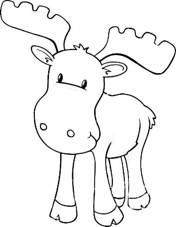 Moose Baby Moose Coloring Page