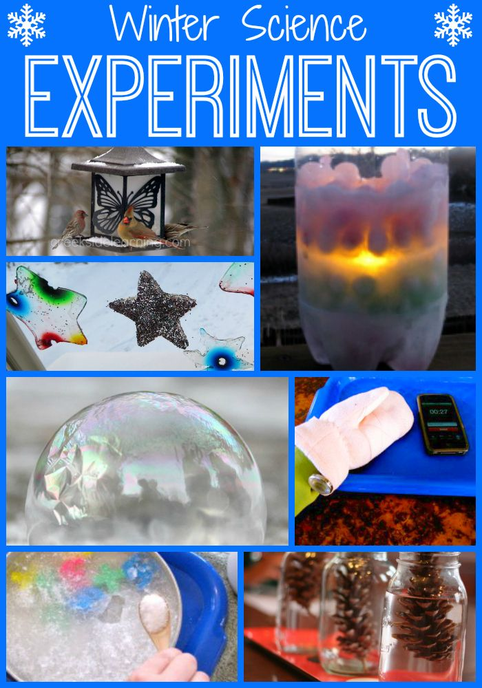 Winter science experiments for kids grades K through 5. Hands-on experiments about snow, ice, sledding, animals in winter, trees and plants, frost, pinecones,