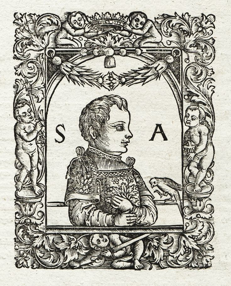 Prince Sigismund Augustus with a parrot by Anonymous (possibly Crispin Scharffenberg), 1521 (PD-art/old), Biblioteka Narodowa