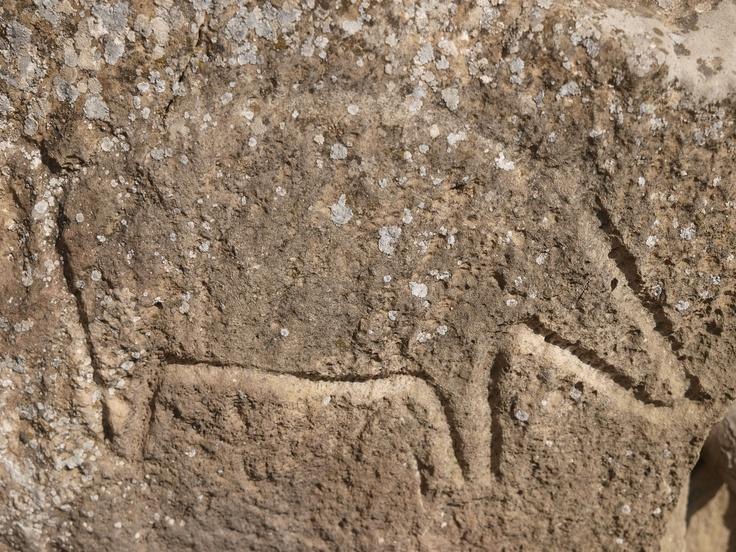 Petroglify -  Park Narodowy Qobustan (az. Qobustan Milli Parkı) - Azerbejdżan