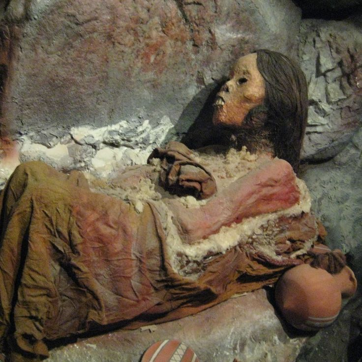 The Incas  Local Histories