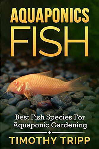 762 best preppers aquaponics hydroponics systems for Best fish for aquaponics