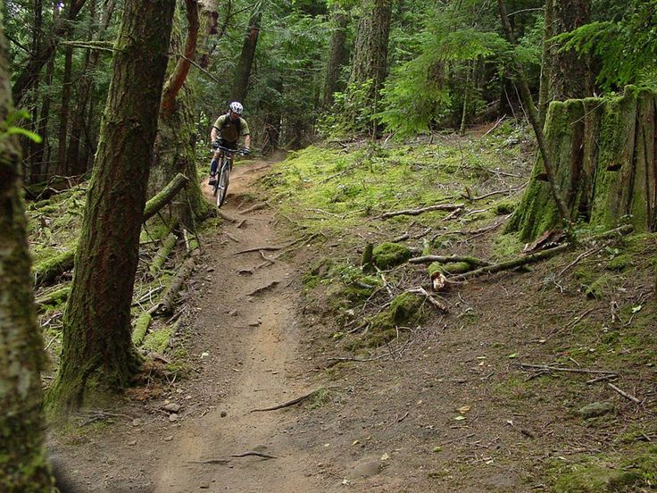 From Dewdney Trail to Kootenay Pass, from Ridgemont to the Seven Summits, British Columbia has got it all! #Biking