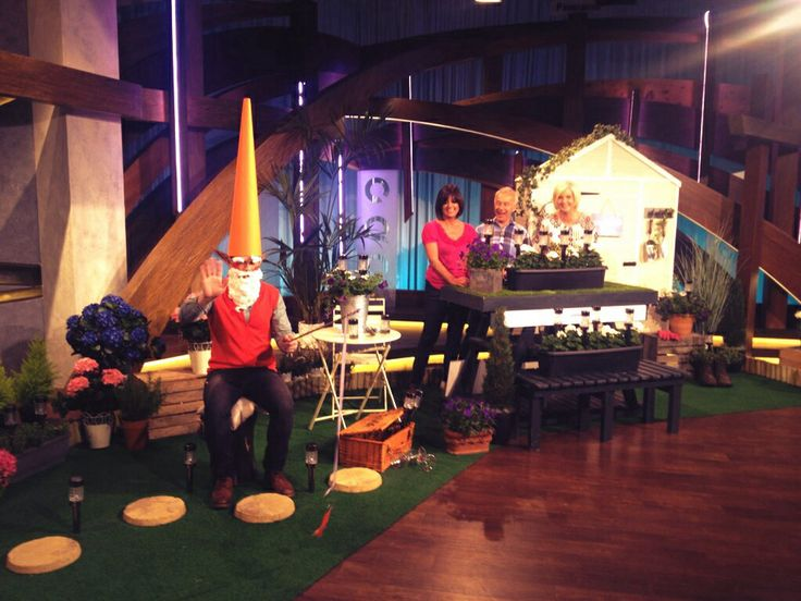 Real Gnomes: 32 Best QVC Life... Images On Pinterest