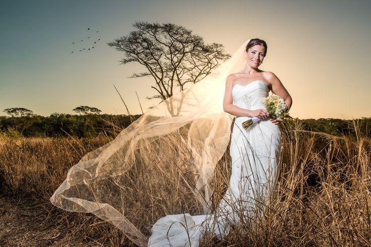 Trompie Van Der Berg Gauteng Wedding Photographer - Weddings