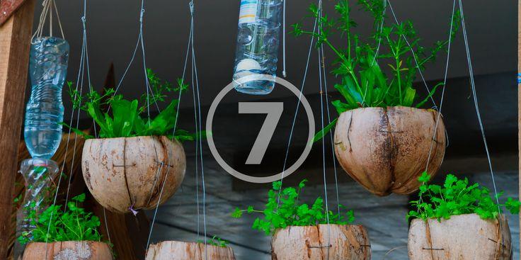 7 способов использовать пластиковые бутылки в саду - http://lifehacker.ru/2015/06/06/plastikovye-butylki-v-sadu/