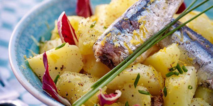 15 recettes estivales avec la sardine en boîte