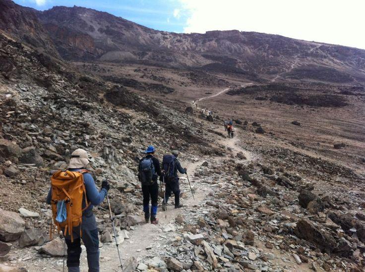 Subindo o Kilimanjaro