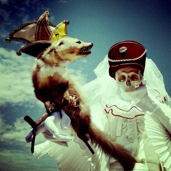 Surrealismus Bilder schädel Merkmale skelet fuchs