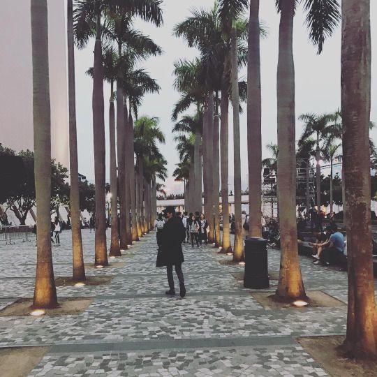 161205 | Sehun's Instagram/Weibo Update
