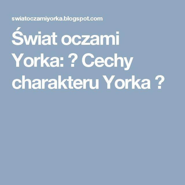 Świat oczami Yorka: ♥ Cechy charakteru Yorka ♥