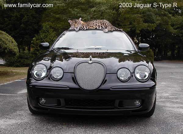 2003 Jaguar S-type R - http://www.4zwheels.net/2003-jaguar-s-type-r/