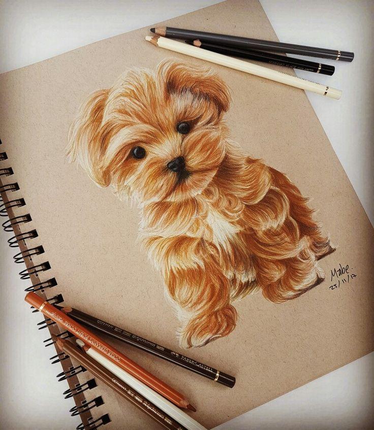 Puppy draw