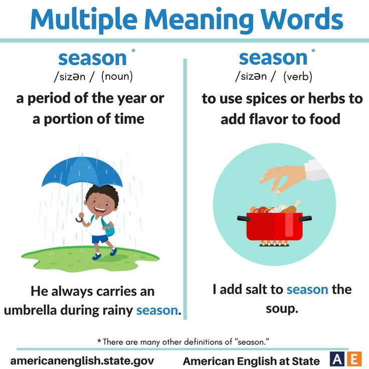 Multiple Meaning Words: Season
